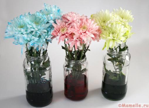 как покрасить цветы пищевыми красителями