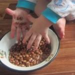 игры с фасолью для детей